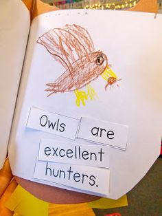 A day in first grade: Owl Pellet Dissections and a weekly recap!