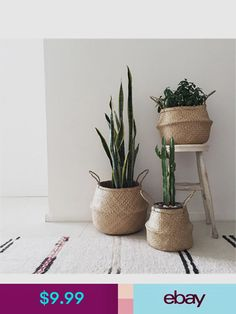 deco love Pflanzen zuhause How Baby Monitors Work One of the favorite thing Plantas Indoor, Belly Basket, Decoration Plante, Decoration Inspiration, Decor Ideas, 31 Ideas, Home And Deco, Hanging Baskets, Hanging Plants