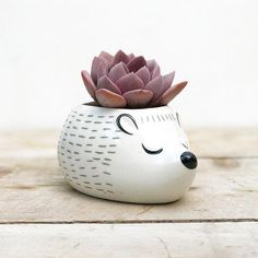 Sleepy Hedgehog Replace cactus with felt ball and use as pin cushion Ceramic Flower Pots, Ceramic Planters, Ceramic Clay, Planter Pots, House Plants Decor, Pinch Pots, Clay Animals, Clay Pots, Planting Succulents