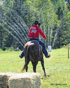 Water sprinkler = might be best to lead Pat through first before trying to ride him through