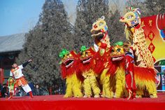 It's day 9 of the Spring Festival in #China and today it's time to celebrate the birthday of the Jade Emperor the ruler of the heavens! Lion dances are often included in festivals and celebrations although they are now more common in overseas Chinese communities. They can still be seen in mainland China at temple fairs.