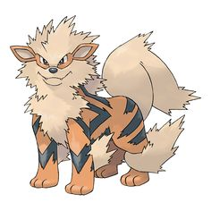 Arcanine - 059 - A Pokémon that has long been admired for its beauty. It runs agilely as if on wings. Its magnificent bark conveys a sense of majesty. Anyone hearing it can't help but grovel before it.  @PokeMasters