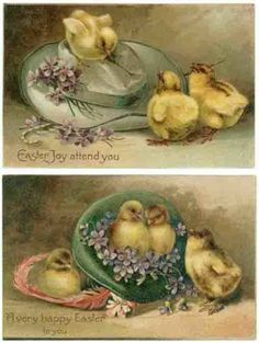 (2) Vintage Easter Greetings PC's,  Chicks, Purple Flowers, Old Hats, 1908