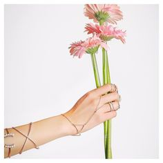 Brightening up this gloomy day with new #ALEXMIKA arrivals  Shop the Perla #Bangle Open X Cuff Perla #Handchain  more styles on alexmikajewelry.com   by the talented @momomoinian #holiday #shopping #gifts #jewelry #present #flower