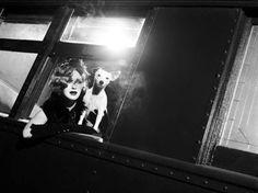 Originale des Abschiedsshootings - Germany's next Topmodel 2014