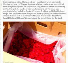 rosas para michael, 2016