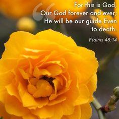Psalm 48:14 . . . Amen!