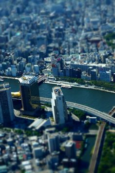 from skytree