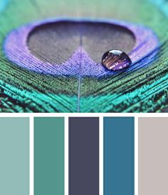 peacock color scheme | Teen bathroom color scheme: peacock colors ... | Theres no place lik ...