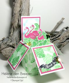 Stampin'Up! Pop of paradise box card tutorial                                                                                                                                                     More