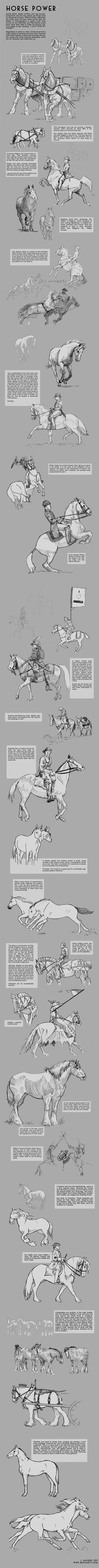 Horse Power Tutorial by sketcherjak