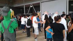 Participan 70 alumnos en la clausura de la veraneada del gimnasio adaptado | El Puntero