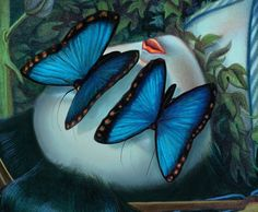 Madame Butterfly by Benjamin Lacombe
