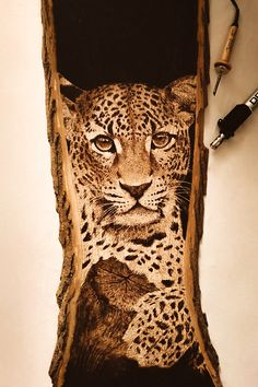 Took me 12 hours to complete this pyrography piece of a leopard. It is now up for sale on etsy looking for a new home. Will be sad to see it go. Pyrography Tools, Pyrography Designs, Pyrography Patterns, Wood Burning Patterns, Wood Burning Art, Woodworking Books, Woodworking Shop Layout, Wooden Wall Art, Wood Art