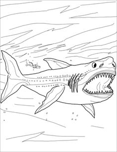 How To Draw Megalodon Megalodon Shark Step By Step ...