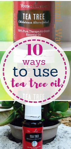Essential Oils, Essential Oil Uses, Uses for Tea Tree Oil, Things to Do With Tea Tree Oil, Tea Tree Oil Uses, Natural Living, Natural Beauty, Home Remedies, Home Remedies That Work