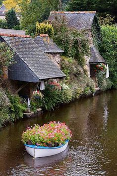Living beside the water, w/a boat garden filled w/flowers.