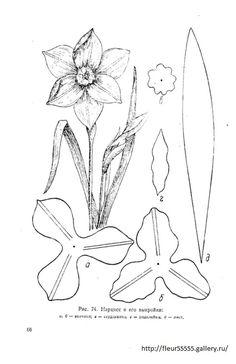 Gallery.ru / Фото #66 - 91 - Fleur55555 Leaf Template, Flower Template, Templates, Flower Svg, Flower Crafts, Crepe Paper Flowers, Fabric Flowers, Handmade Flowers, Diy Flowers