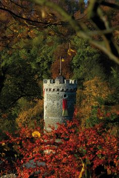 Horni Hrad. Czech Republic, Great Places, Horn, Castles, Houses, Homes, Chateaus, Horns, House