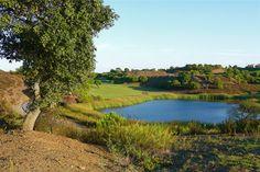 Castro Marim Golfe - Costa de la Luz – Truly enjoyable golf   #overseashomes #costadelaluzspain