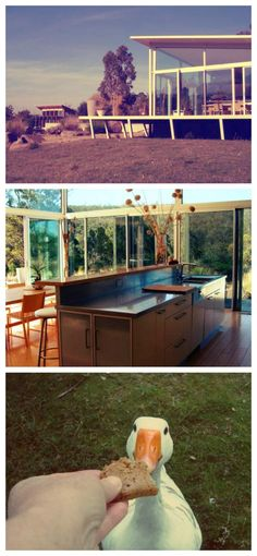 Stay in this stunning modern home in #Tasmania FREE via house-sitting! See more details here: http://www.travellingweasels.com/2015/04/house-sitting-opportunities.html  #budgettravel #travel