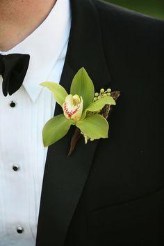 Green Cymbidium Orchid Bout by Blue Bouquet, www.bluebouquet.com