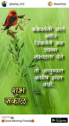 Morning Prayer Quotes, Morning Prayers, Good Morning Quotes, Crazy Facts, Weird Facts, Love Poems For Wife, Happy Birthday Qoutes, Marathi Quotes, Good Morning Messages