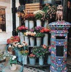 Pretty flower shops in London  . . . . . #flower #flowers #flowerstagram #flowerpower #love #beautiful #floral #flowermagic #instagood #flowerlove #flowergirl #flowergram #floweroftheday #blossom #flowerporn #photography #flowerphotography #instaflower #bloom #rose #cute #instablooms #peony #london #flowershop #boquete #fashionblogger_de #inspodreamers #fashionstyle