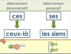 French homophones posters - Affichages homophones - français