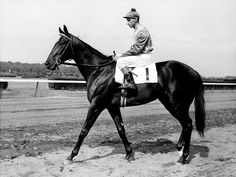 BOLD RULER, Preakness Stakes winner of 1957, and sire of Secretariat.