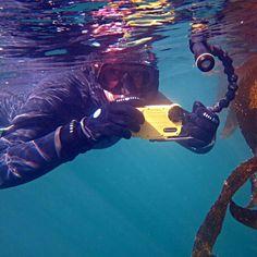 Freediving & photos!