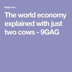 The world economy explained with just two cows - 9GAG