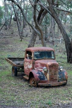 ༺♥༻    Old Truck In The Brush