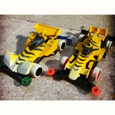 Tigers, ready for stock race