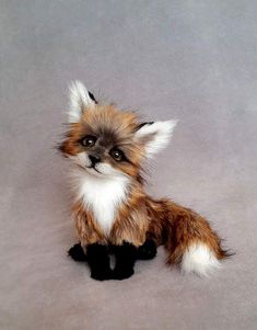 Cute little fox pictures. Actually this is a toy fox. You can buy it. And mind you it is not made of original fox skin!