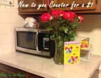 New to You Countertop for $1 #DIY, #Cheap, #BudgetSavvy - http://momssavingmoney.com/new-to-you-counter-for-1/