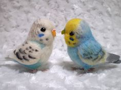 Budgies are Awesome: October 2011