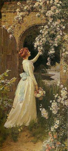 Picking Roses,  Percy Tarrant. (1879-1930) British  .....Note: He is Perhaps best known for his work as an illustrator of books such as 'Wuthering Heights' and 'Little Women',