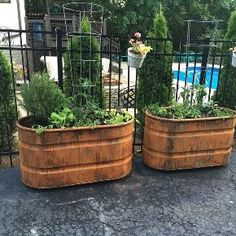 copper patina and rust container gardens, container gardening, repurposing upcycling, Summer container garden with rusted finish