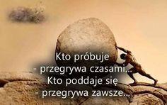 Kto próbuje - przegrywa czasami... Kto poddaje się - przegrywa zawsze...