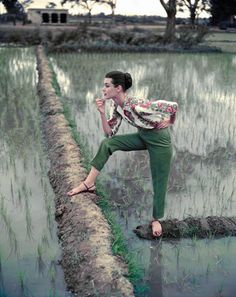 Image from http://www.caravanmagazine.in/sites/default/files/Norman-Parkinson,-Barbara-Mullen,-India,-Vogue-1956-(6).jpg.