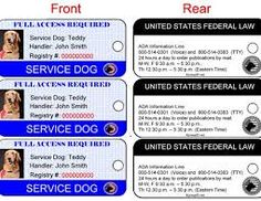 Our Autism Service Dog ID Card is a personalized identification card for your service.
