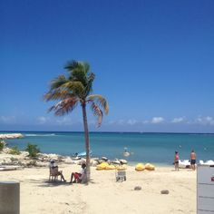 Want to go back to Jamaica pretty bad! - Soon, real soon.