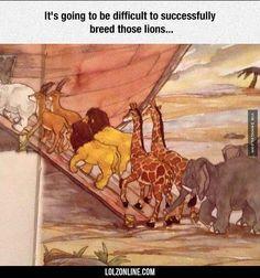 Noah's Ark Overlooked Problem