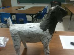Vet Med Project - Students make a paper mache model of an animal then write the directional terminology on one side and basic body parts on the other.  - OLT