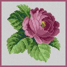 Cross Stitch Rose, Cross Stitch Flowers, Cross Stitch Charts, Cross Stitch Designs, Cross Stitch Patterns, Cross Stitching, Cross Stitch Embroidery, Hand Embroidery, Pixel Crochet