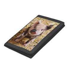 Cute little pig closeup piglet piggy photo Tri-fold Wallet, Men's, Size: TriFold Nylon Wallet, Black Baby Pigs, Pet Pigs, Photography Gifts, Animal Photography, Cute Funny Babies, Barnyard Animals, All Themes, Baby Penguins, Little Pigs