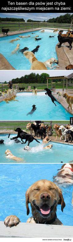 Psi basen
