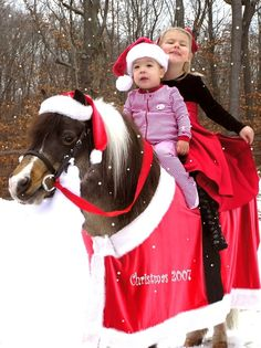 7 Horses Dressed Up for the Holidays « HORSE NATION @Jamie Robertson