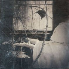 Melissa T. Hall - Spot in the Sun - Photography, Encaustic,
